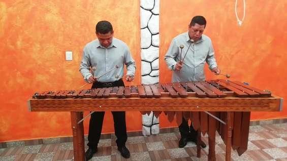 Marimba servicio profesional 55-2969-3083