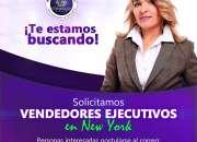 Vendedor ejecutivo